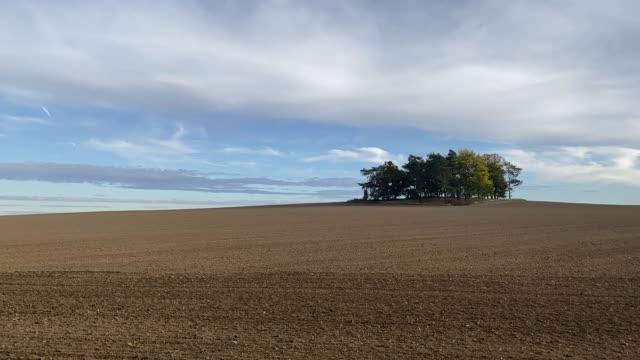vídeos de stock e filmes b-roll de group of trees on plowed field. - terra cultivada