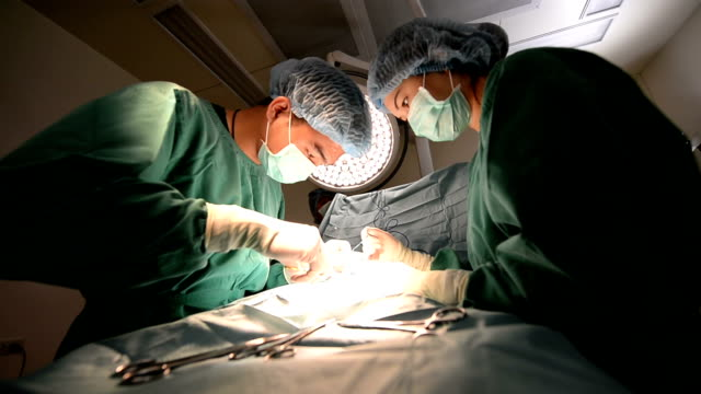 group of veterinarian surgeons video