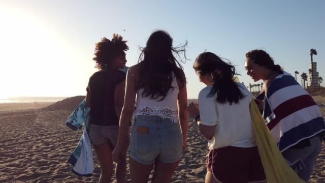 grupp av kvinnliga vänner på stranden i kalifornien - 25 29 år bildbanksvideor och videomaterial från bakom kulisserna