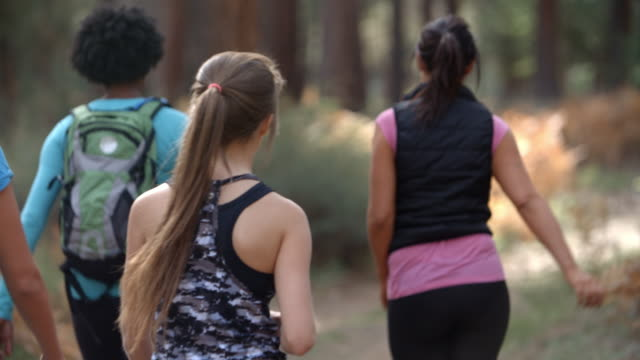 Group of women runners walking in forest talking, back view video