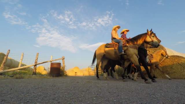 Group of Young Cowboys and Cowgirls Riding Horses video