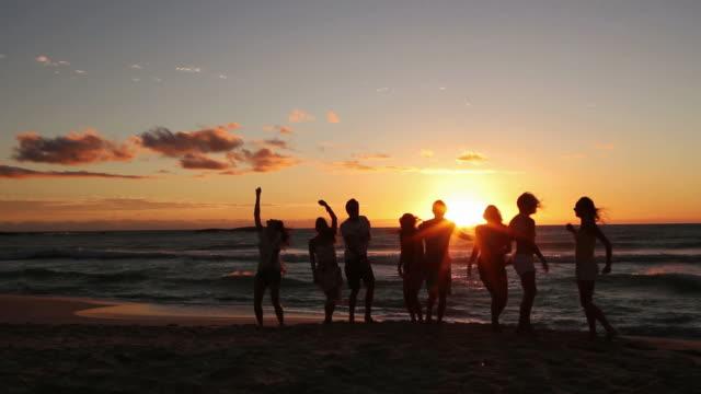 Gruppo di giovani amici di festa sulla spiaggia - video
