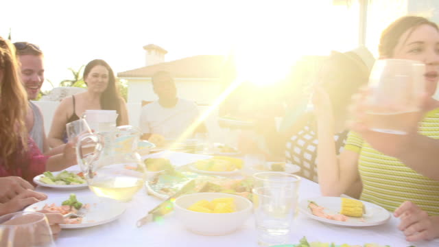 Group Of Young People Enjoying Outdoor Summer Meal video
