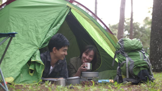 Group of young traveller enjoy for camping at green forest