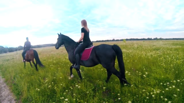 Group of young women rides on horseback in the field Group of young women rides on horseback in the field, wide angle corral stock videos & royalty-free footage