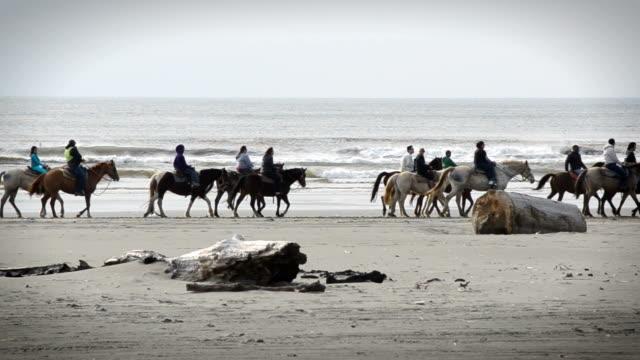 Group Riding Horses Along The Beach video