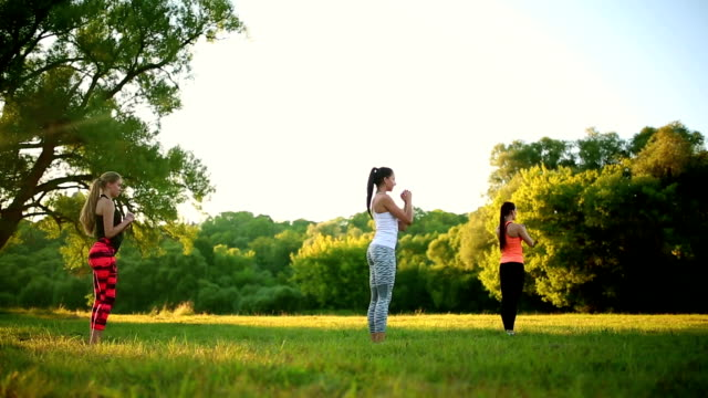 Group with trainer stretching workout on a green grass in the park video