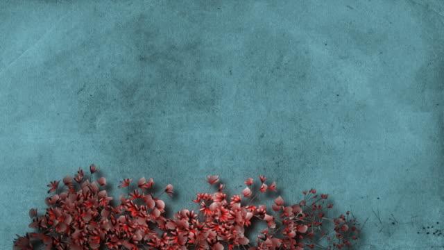 growing flower frame 4 - hd - konst och konshantverk bildbanksvideor och videomaterial från bakom kulisserna