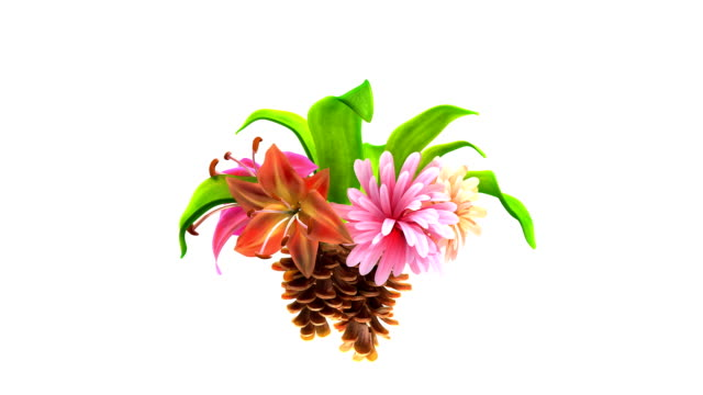 growing flowers with leafs and pine cones video