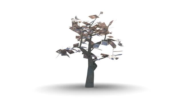 stockvideo's en b-roll-footage met growing tree of thousand japanese yen - yenteken