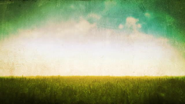 Grunge - Endless Field Loop video