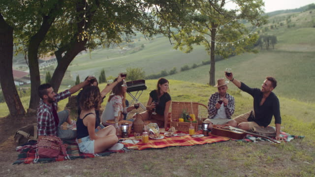 gruop of friends cheering togetherness during the pic nic. shot in slow motion gruop of friends cheering togetherness during the pic nic. shot in slow motion aperitif stock videos & royalty-free footage