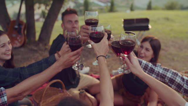 grupp av vänner som jublande gemenskap under pic nic. sköt i slow motion - vin sommar fest bildbanksvideor och videomaterial från bakom kulisserna
