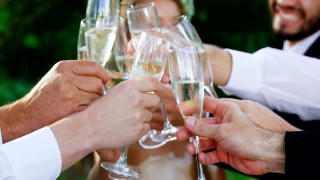 Guest toasting with champagne glasses along with bride and groom 4K 4k video