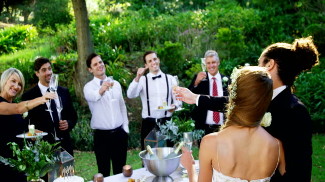 Guests, bride and groom toasting champagne flutes 4K 4k video