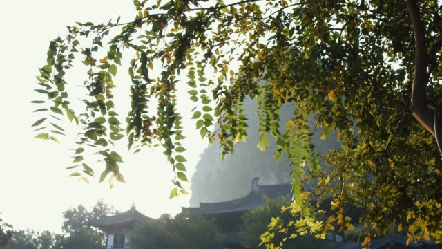 Guilin dipper (rock) scenic spot is located in guilin,China video