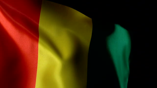 Guinea Flag Flapping