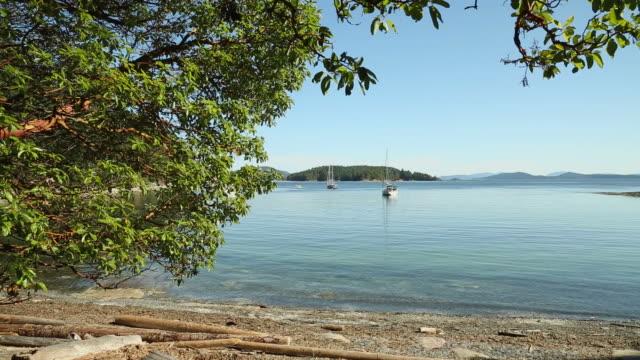 Gulf Islands Anchorage Afternoon, British Columbia video