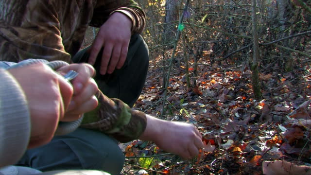 Guy helps girl open knife into woods to cut mushroom video
