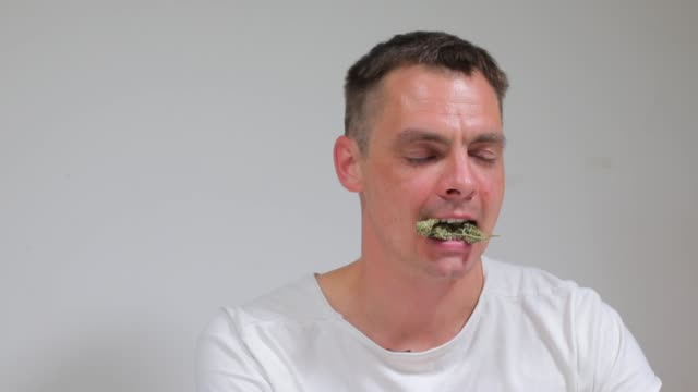 guy holds cannabis in his teeth, medical marijuana portrait of a guy holding cannabis in his teeth, medical marijuana cannabidiol stock videos & royalty-free footage