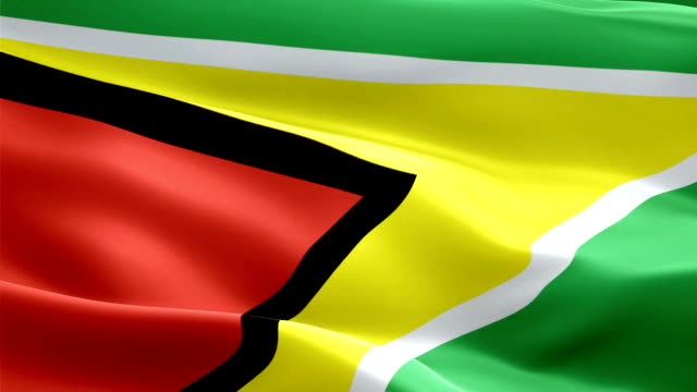 guyana flag motion loop video waving in wind. realistic guyanese flag background. guyana flag looping closeup 1080p full hd 1920x1080 footage. guyana caribbean country flags footage video for film,news - kiss filmów i materiałów b-roll