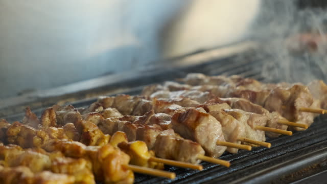 Gyro Donner Pork Chicken Greek Souvlaki fast food video