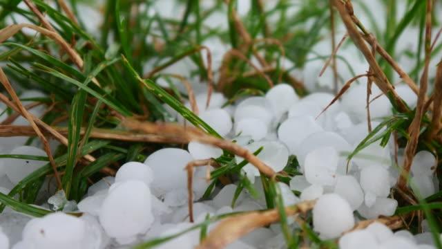 hail on the green meadow - grandine video stock e b–roll