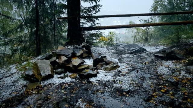 hailstorm bir dağ orman, doğal afet, fırtına - mountain top stok videoları ve detay görüntü çekimi