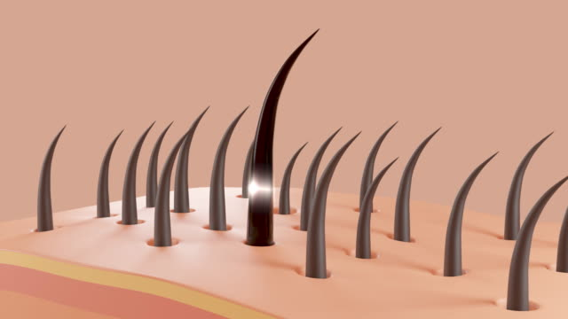 ヘアケア、シャンプーや血清のアニメーション栄養ヘアアクション。 - 人の肌点の映像素材/bロール