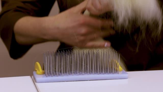 saç uzatma üretim süreci, i̇nsan saç uzatma üretimi - peruk stok videoları ve detay görüntü çekimi