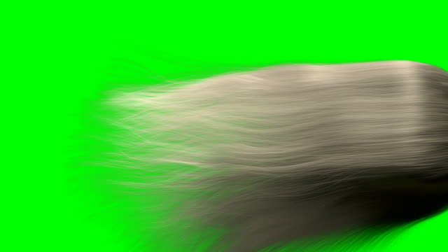 hair render animation BLONDE GS video