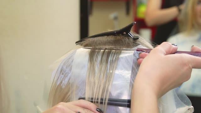kuaför-stilist berber dükkanında saç boyar. kızın saçını iplikçiklere böler ve üzerlerine fırçayla boya uygular. saç bakımı. yakından kapatın. üst arka dan görünümü.saç boyama işlemi - i̇nsan sırtı stok videoları ve detay görüntü çekimi