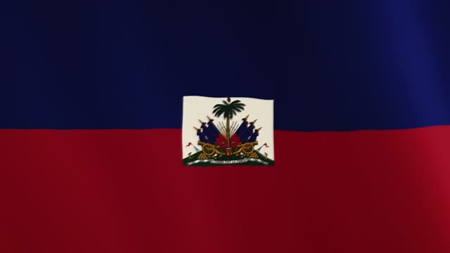 Haiti flag waving animation. Full Screen. Symbol of the country video