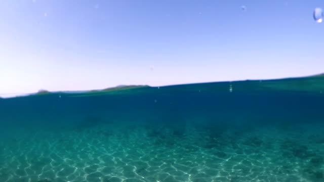 yarım sualtı denizi - bölmek stok videoları ve detay görüntü çekimi