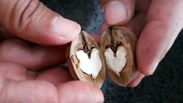 vidéos et rushes de demi coeur de noix - un seul objet