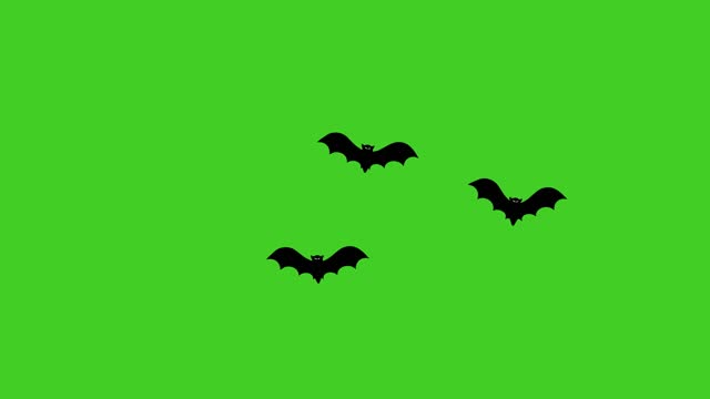 Halloween black flying bats animation on a green background