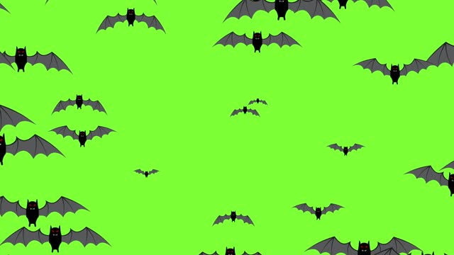 Halloween black flying bats Halloween black flying bats animation on a green background. Motion design elements for decoration, vampire stock videos & royalty-free footage