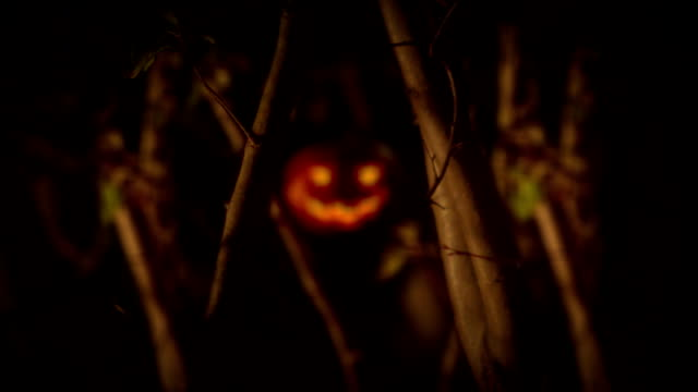 Halloween clip - scary pumpkin in the forest. video