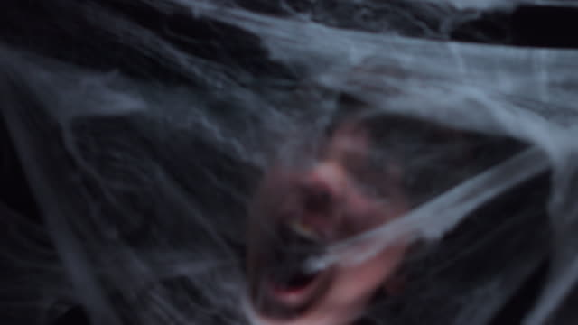 4K Halloween horreur d'araignée et des cris de visage - Vidéo