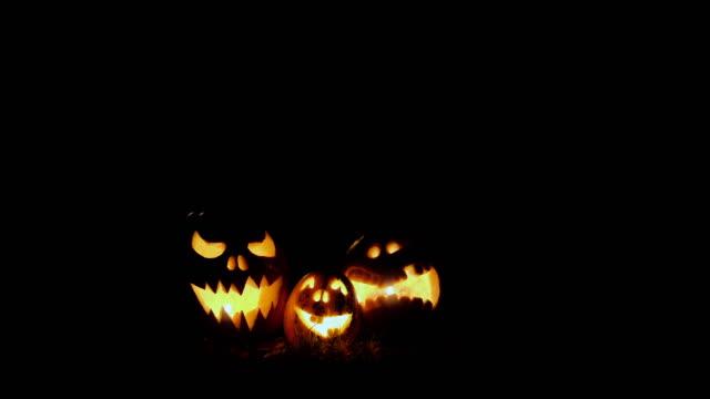 lanterna jack testa di zucca di halloween - decorazione festiva video stock e b–roll