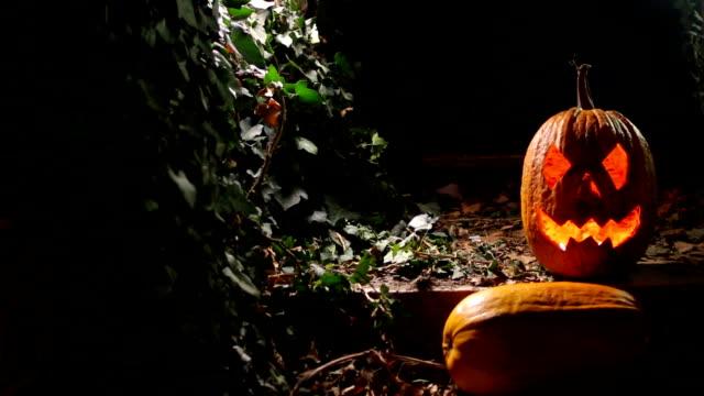 Halloween pumpkin, jack o lantern video