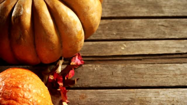 cadılar bayramı balkabağı ahşap masa 4k akçaağaç yaprağı ile - pumpkin stok videoları ve detay görüntü çekimi