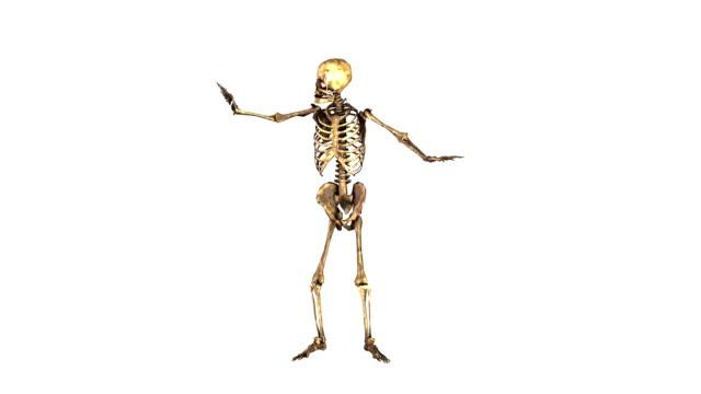 halloween iskelet dans - i̇nsan i̇skeleti stok videoları ve detay görüntü çekimi