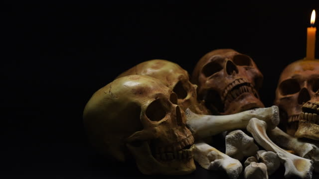 Halloween. the skulls on black background. 4k, dolly shot Halloween. the skulls on black background. 4k, dolly shot ghost icon stock videos & royalty-free footage
