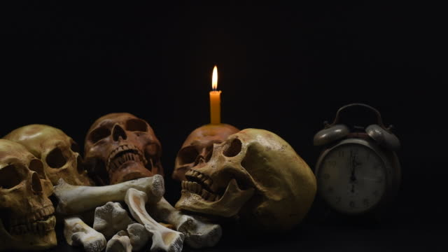 Halloween. the skulls on black background. 4k, dolly shot Halloween. the skulls on black background. 4k, dolly shot skull stock videos & royalty-free footage