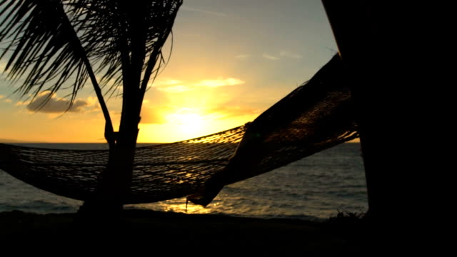 Hammock and Palm Trees at Sunset SLOW MOTION. Luxury Vacation Relaxation Lifestyle. Hammock Swinging on the Wind Between Two Palm Trees. Backyard Oceanfront Real Estate. Maui Hammock and Palm Trees at Sunset SLOW MOTION. Luxury Vacation Relaxation Lifestyle. Hammock Swinging on the Wind Between Two Palm Trees. Backyard Oceanfront Real Estate. Maui lounge chair stock videos & royalty-free footage