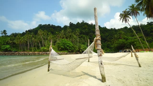 hammock around beautiful tropical beach and sea with coconut palm tree on paradise island - amaca video stock e b–roll