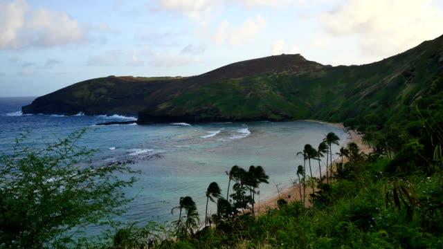 ハナウマ湾は、ハワイ、オアフ島) ビデオ
