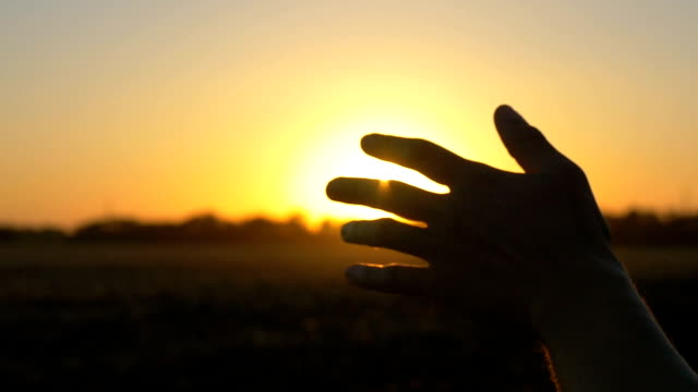 hand at sunset. a man's hand from the window of a car in the sun's rays - стремление стоковые видео и кадры b-roll