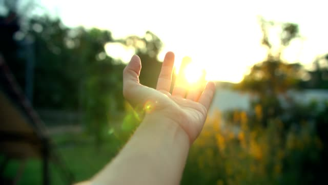 hand catch the sun - palm of hand stock videos & royalty-free footage